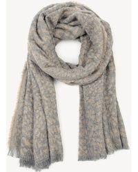 Sole Society - Textured Leopard Print Scarf - Lyst