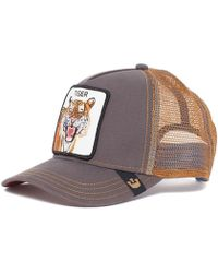 Goorin Bros - Casquette Tiger GB 0 1 TIGER hommes Casquette en multicolor a17874a77f7