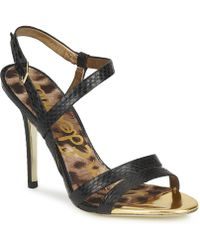 Sam Edelman - Abbott Women's Sandals In Black - Lyst