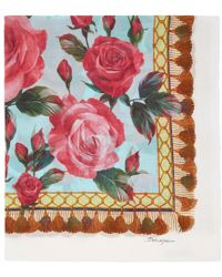 Dolce & Gabbana - Multicolor Roses Scarf - Lyst