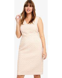 Studio 8 - Nieve Jacquard Dress - Lyst