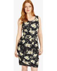 Studio 8 - Leonie Floral Print Dress - Lyst