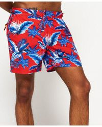 Superdry - Swimshort With Palm Tree Print In Red - Lyst