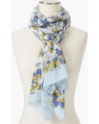 Talbots - Allover Butterfly Scarf - Lyst