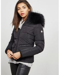 FROCCELLA - Womens Big Fur Padded Jacket Black - Lyst
