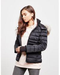 Calvin Klein - Down Padded Jacket Black - Lyst