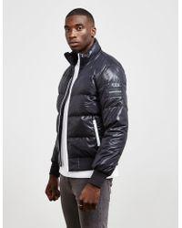 Calvin Klein - Mens Down Padded Jacket Black - Lyst