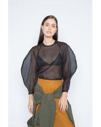 Enfold - Organza Raglan Pullover - Lyst