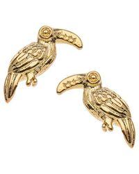 Orelia - Mini Toucan Stud Earrings - Lyst