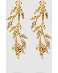 Alberta Ferretti - Leaf Embellished Gold-tone Earrings - Lyst