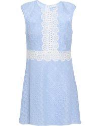 Sandro - Cotton-blend Corded Lace Mini Dress Light Blue - Lyst
