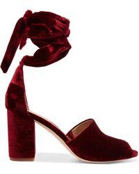 acf36b300336 Sam Edelman - Woman Lace-up Velvet Sandals Merlot - Lyst