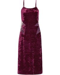 Anna Sui - Woman Starburst Crushed-velvet Slip Dress Plum - Lyst