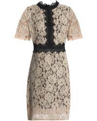 Raoul - Corded Lace Mini Dress - Lyst
