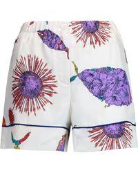 Emilio Pucci - Printed Silk-twill Shorts - Lyst