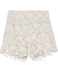 Raoul - Guipure Lace Shorts - Lyst