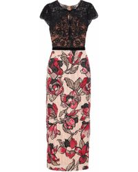 Marchesa notte - Velvet-trimmed Corded Lace And Sequined Tulle Midi Dress - Lyst