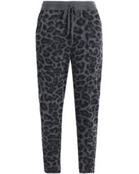 Splendid - Woman Leopard-print Stretch-jersey Track Trousers Anthracite - Lyst