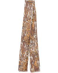 Adrienne Landau - Sheer Printed Scarf - Lyst