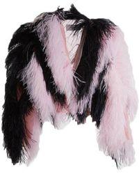 Marques'Almeida - Striped Feather Jacket - Lyst