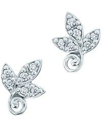 Tiffany & Co. - Olive Leaf Earrings - Lyst