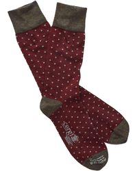 Corgi - Polka Dot Socks In Maroon/white - Lyst