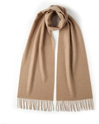 Johnstons - Solid Cashmere Scarf In Camel - Lyst