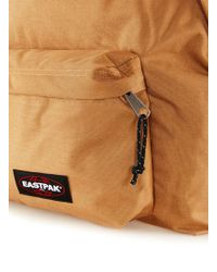 TOPMAN - Eastpak Brown Backpack - Lyst
