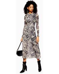 bd7ecf3363e7 TOPSHOP - Petite Zebra Print Mesh Midi Dress - Lyst
