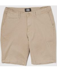 Dickies - Palm Springs Shorts - Lyst