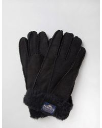 Penfield Pennystone Sherling Gloves