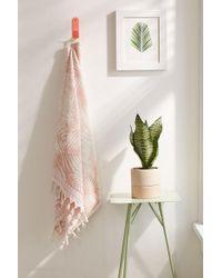 Urban Outfitters - Lila Palm Print Tassel Trim Towel - Lyst