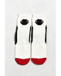 Chums - Bird Sock - Lyst