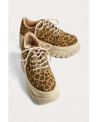 Urban Outfitters - Uo Tyson Leopard Print Chunky Women's Sneaker - Lyst