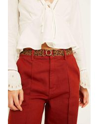 Urban Outfitters - Leopard Print Elasticated Belt - Womens S/m - Lyst