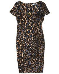 8e1a06fbe35 Blumarine - Brown Wool Dress - Lyst