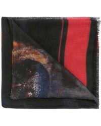 Givenchy - Rottweiler Shawl - Lyst
