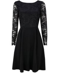 Wallis - Black Lace Fit And Flare Dress - Lyst