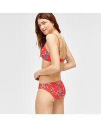 Warehouse - Bamboo Print Bikini Top - Lyst