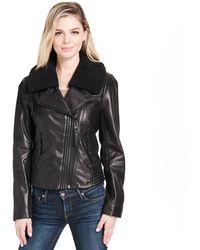 Wilsons Leather - Designer Brand Asymmetrical Zip Leather Jacket W/ Sherpa Collar - Lyst