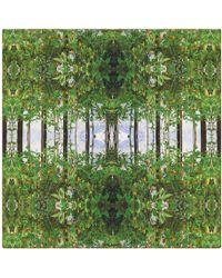 Pam Weinstock London - Bella Toscana Silk Scarf - Lyst