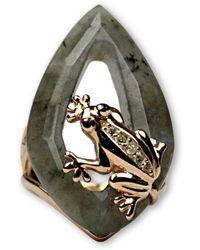 Bellus Domina - Labradorite Frog Ring - Lyst