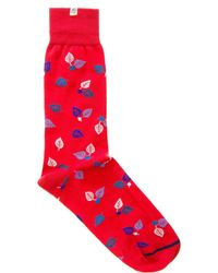 40 Colori - Red Birch Organic Cotton Socks - Lyst