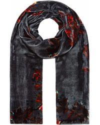 Klements - Long Velvet Scarf In Gothic Floral Print Petrol - Lyst