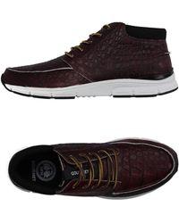 Gourmet - High-tops & Sneakers - Lyst