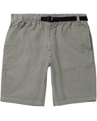 039a31c4be Men's Mollusk Shorts Online Sale - Lyst
