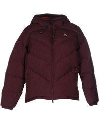 Lacoste - Down Jacket - Lyst