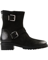 Steve Madden - Ankle Boots - Lyst
