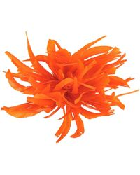 Jucca Spilla - Arancione