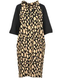 Pennyblack - Knee-length Dresses - Lyst